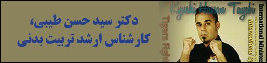 … دکتر سید حسن طیبی